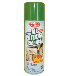 ALL PURPOSE CLEANER 13 OZ