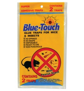 BLUE TOUCH GLUE TRAP 2 PACK IN DISPLAY MOUSE