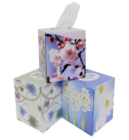 FACIAL TISSUE 80-2 PLY SHEETS